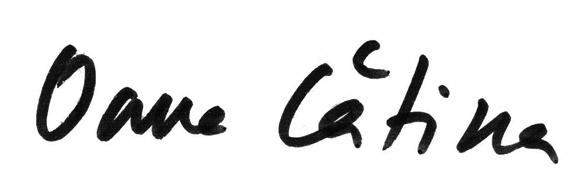 Click aici pentru a vizualiza Manuscrisul - Oana CĂTINA