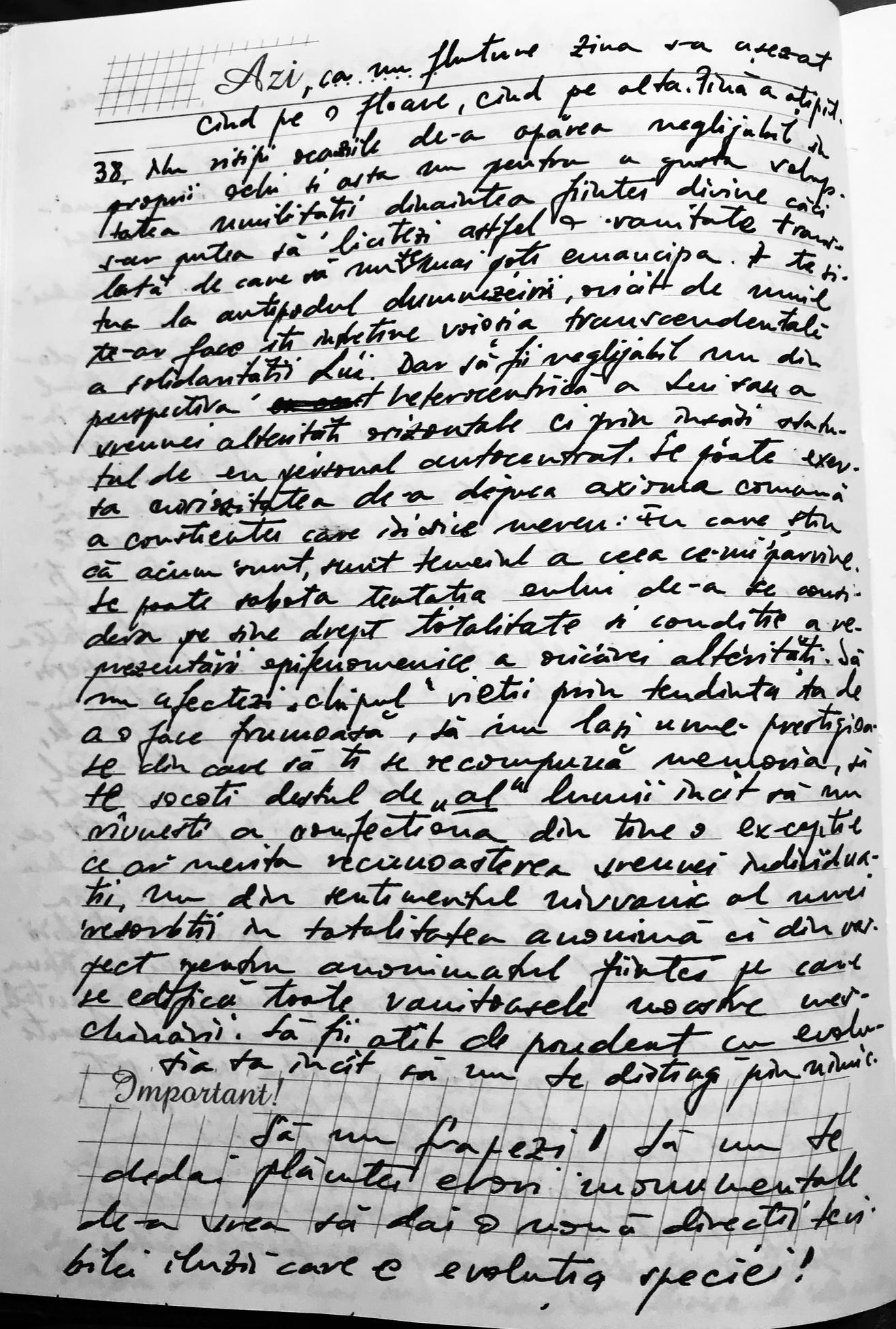 Click aici pentru a vizualiza Manuscrisul - Ion CHINEZU