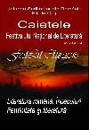 025 Caietele FestLit Cluj 2016 _ http://www.uniuneascriitorilor-filialacluj.ro/Poze/carti/Coperta_Caiete_FestLit_2016_ff.jpg